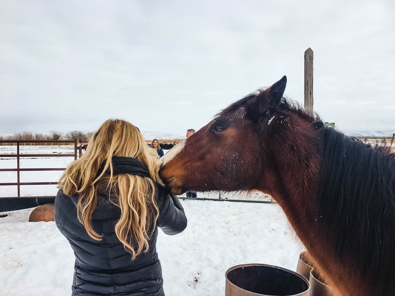 Dawn Heumann, Commercial Photographer with horse