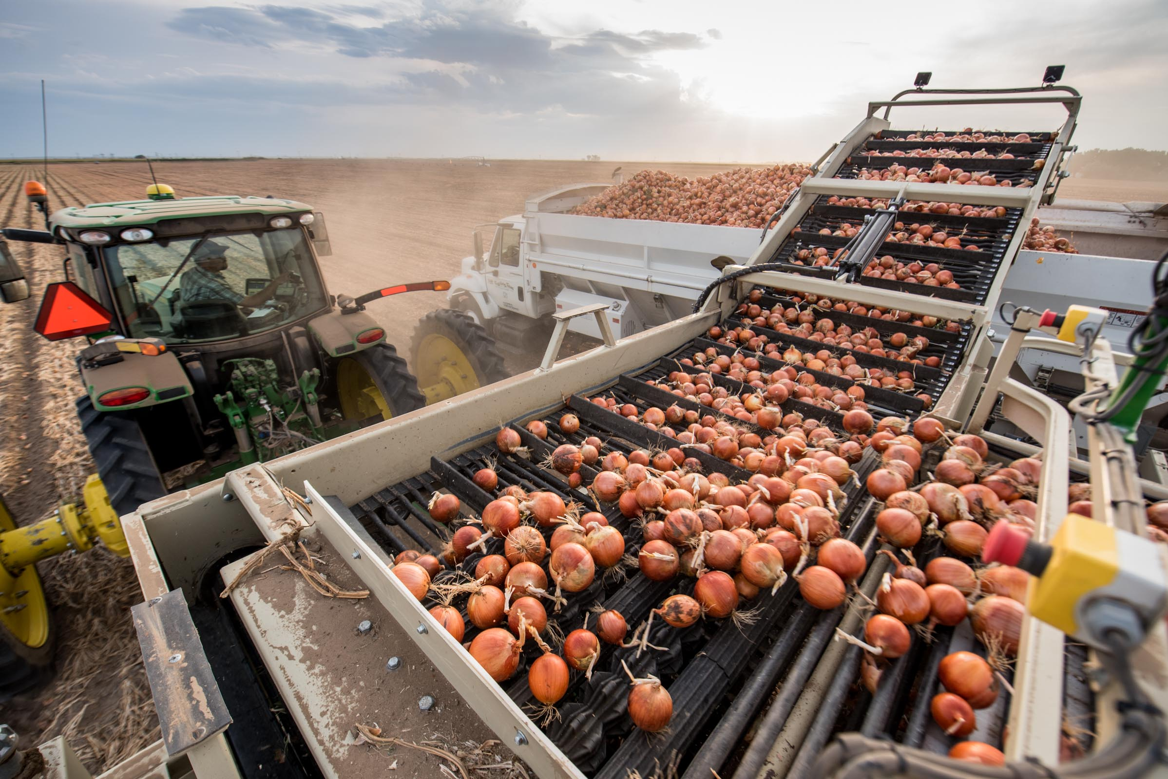 equipment_17_09_11_AgCredit_Onions_D750-315