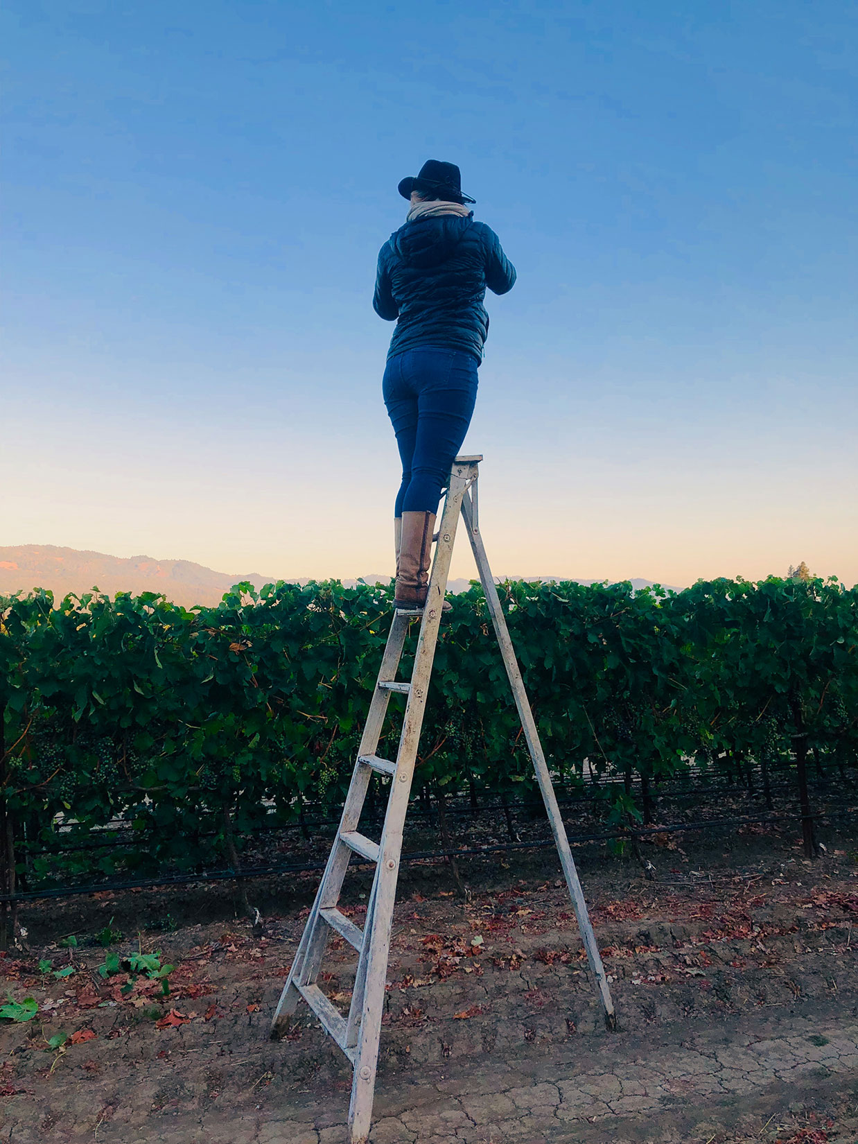 Dawn Heumann photographer on ladder BTS